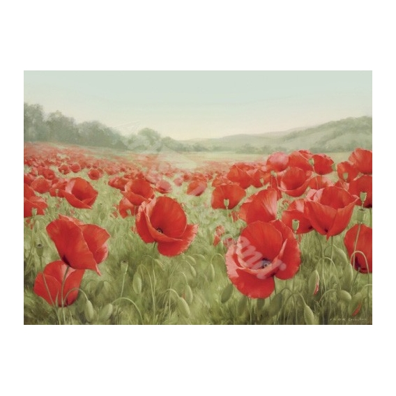 """Campo de amapolas (Field Of Poppies)"""