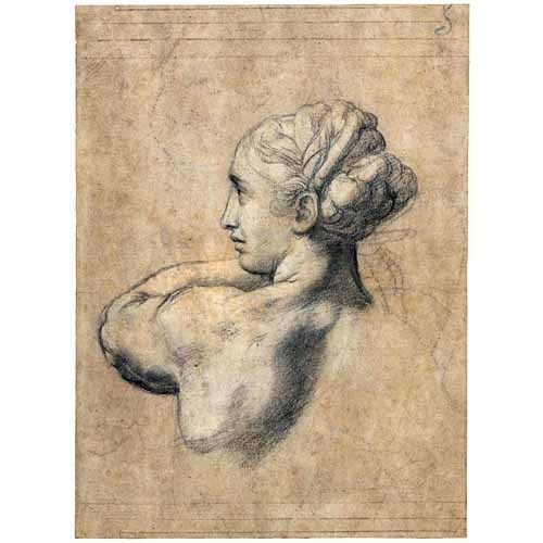 Comprar portrait and figure - Head_of_a_Woman online - Rafael, Sanzio da Urbino Raffael