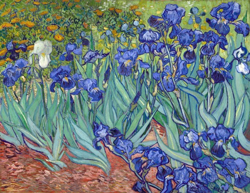 flowers - Irises, 1889 - Van Gogh, Vincent
