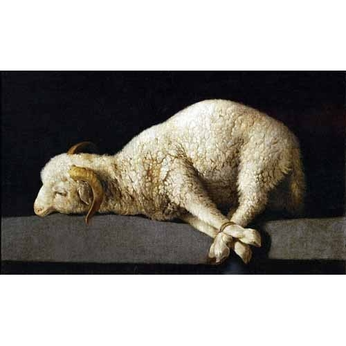 Comprar Still life paintings - Agnus Dei, 1635-40 online - Zurbaran, Francisco de