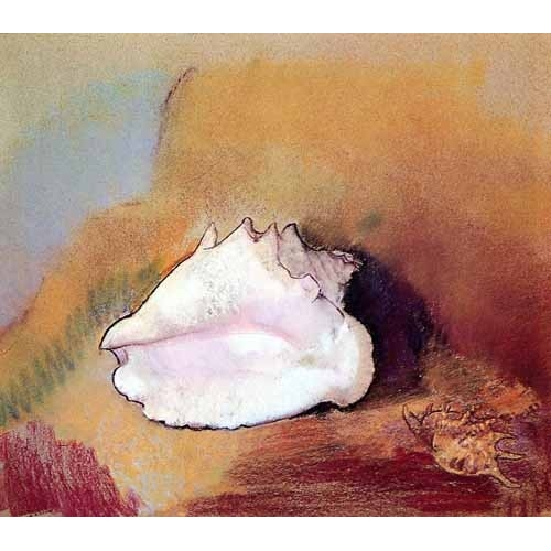 Comprar Still life paintings - La concha de mar online - Redon, Odilon
