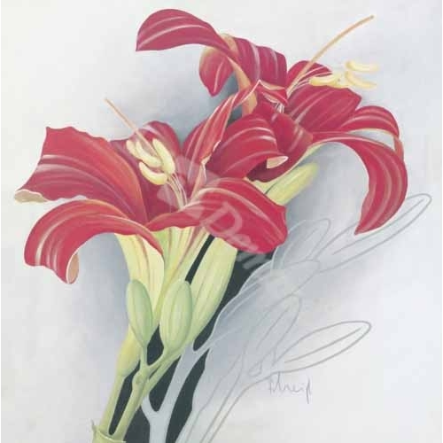 """Day-Lilies I"""