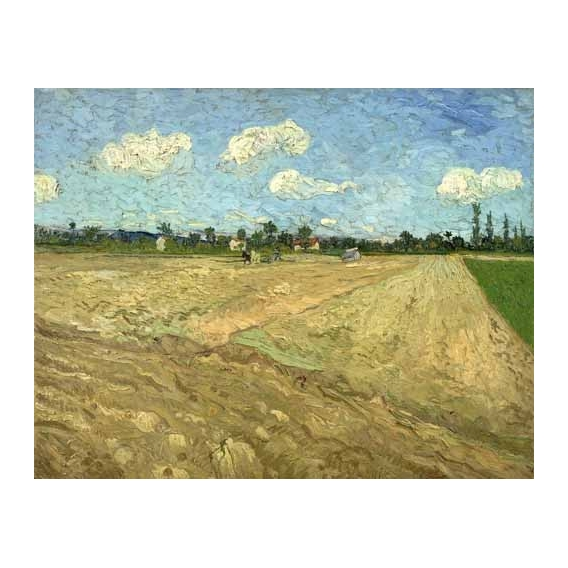"""Ploughed fields (The furrows), 1888"""