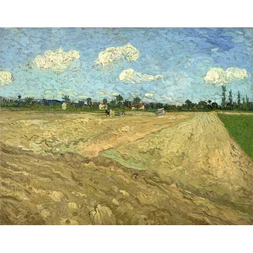Comprar  - Cuadro Ploughed fields (The furrows), 1888 online - Van Gogh, Vincent