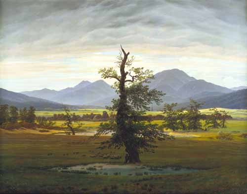 landscapes - Solitary Tree (also known as Village Landscape in Morning Light - Friedrich, Caspar David
