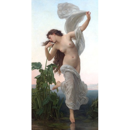 Comprar  - Cuadro L'Aurore online - Bouguereau, William