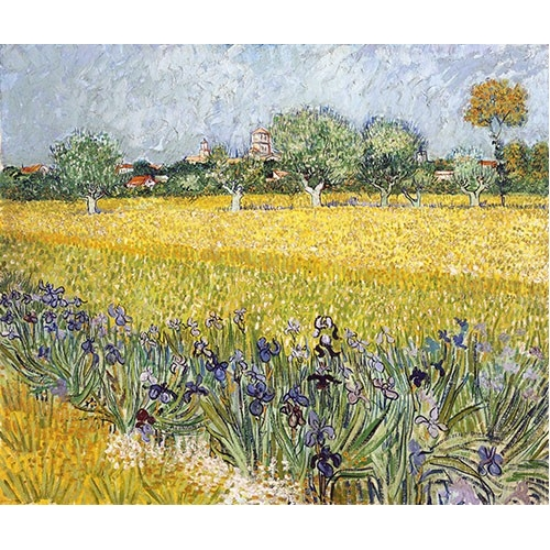 Cuadro Field with flowers near Arles, 1888