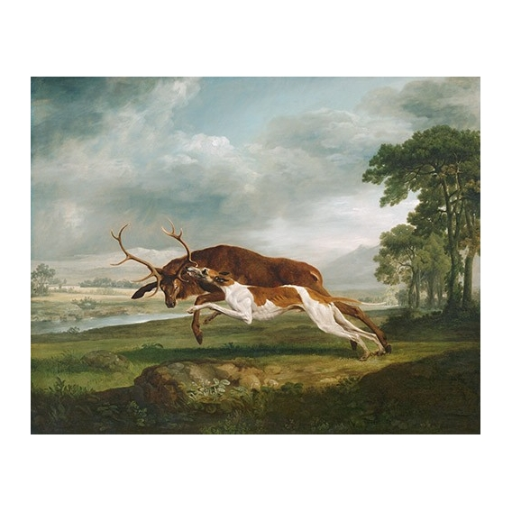 Hound Coursing a Stag (caza)