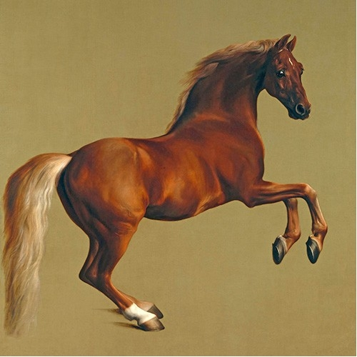 Comprar animals - Whistlejacket (caballos) online - Stubbs, George
