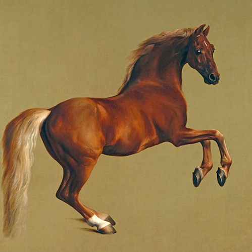 animals - Whistlejacket (caballos) - Stubbs, George