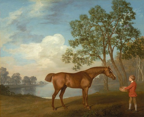 animals - Pumpkin with a Stable-lad (caballos) - Stubbs, George