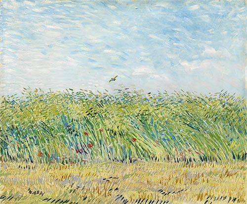 landscapes - Wheatfield with Partridge, 1887 - Van Gogh, Vincent